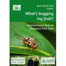 What's bugging my fruit? Common Insect Pests of Deciduous Fruit Trees